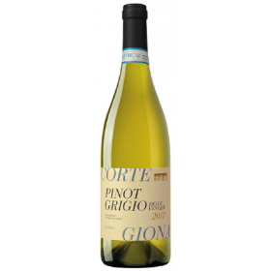 PINOT GRIGIO - Vin blanc